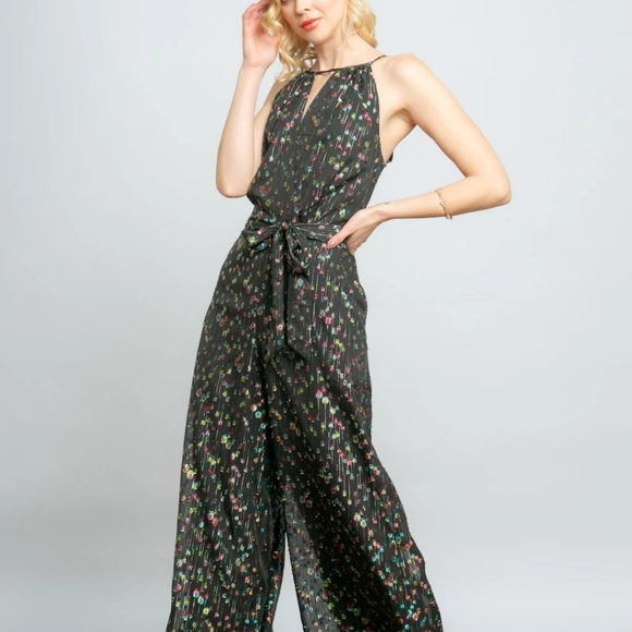 Anthropologie Pants - Brand new Eva Franco Anthropologie jumpsuit XS 2
